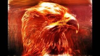Video Eagle on fire download MP3, 3GP, MP4, WEBM, AVI, FLV Agustus 2018