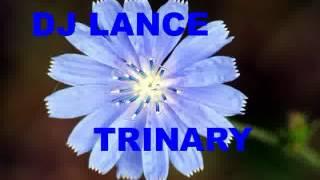 Porn Star - DJ Lance Trance - Trinary