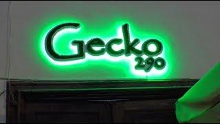 Inauguración Gecko 290 - Puerto de La Cruz