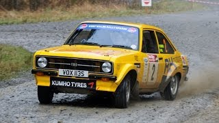 Red Kite Stages 2014 Round 1 RAC Rally Championship