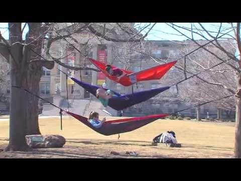 Postcard from Campus: Sun Day, Fun Day