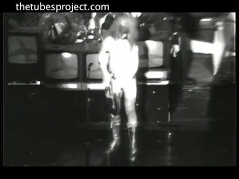 """The Tubes, """"Now"""" Spring Tour, 1977 12"""