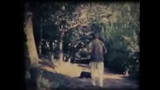 松山商科大学映画研究部 昭和58年(1983年)制作 南溟(なんめい...