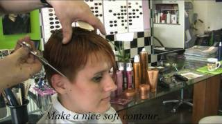 Refresh my style and color ! Karin ! by Theo Knoop 2011 production.mpg