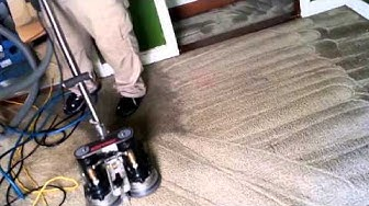 Carpet Cleaners Professionals warwick Ri