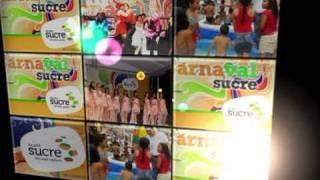 Municipio Sucre celebró a lo grande sus carnavales 2011