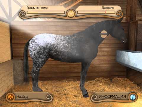 Пацанчик ты попал. Лошади играют. Игрушечный пони. Игры лошадей