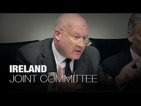 Ireland - Joint Committee on Foreign Affairs - Unethical Organ Harvesting in China - Part 2/3