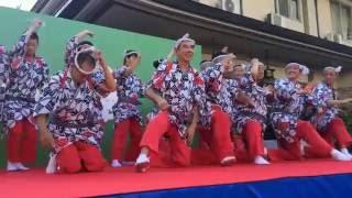 落語協会主催 湯島天満宮で行われる年一回のお祭り 謝楽祭。 賑やかな一...