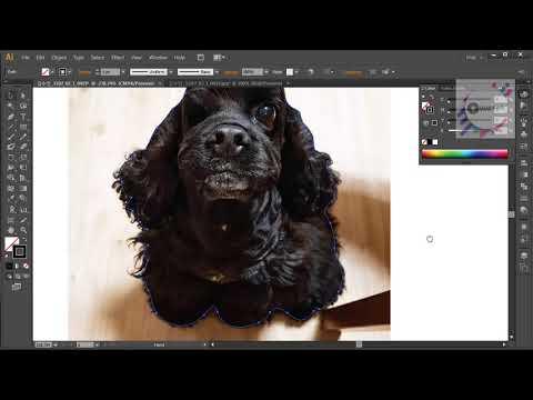 Adobe Illustrator Cs6 - Cắt pét trơn tru để bán trên Amazon