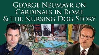 Dog Nursing Story & Cardinals in Rome with George Neumayr