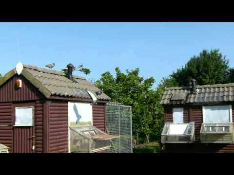 Overnachtfond Duiven Van Theo Streefkerk