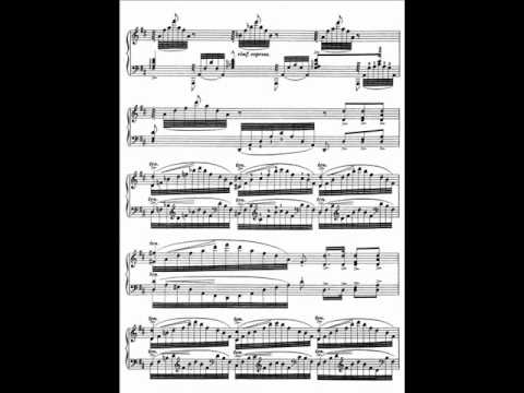 V. Ovchinnikov plays Liszt Transcendental Etudes - No.6 'Vision'