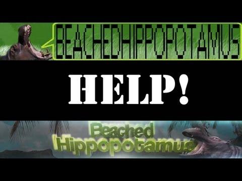 BeachedHippopotamus was Terminated!