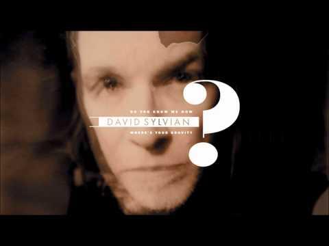 David Sylvian - Do You Know Me Now?