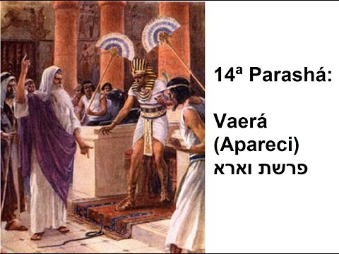14ª Parashá: Vaerá (Apareci) por: Rabino Marcelo Miranda Guimarães (17/01/2015 | 5775)