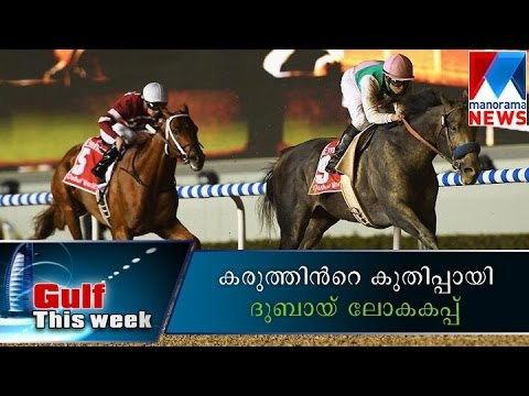 Dubai Worldcup Horse Race - Gulf This Week | Manorama News