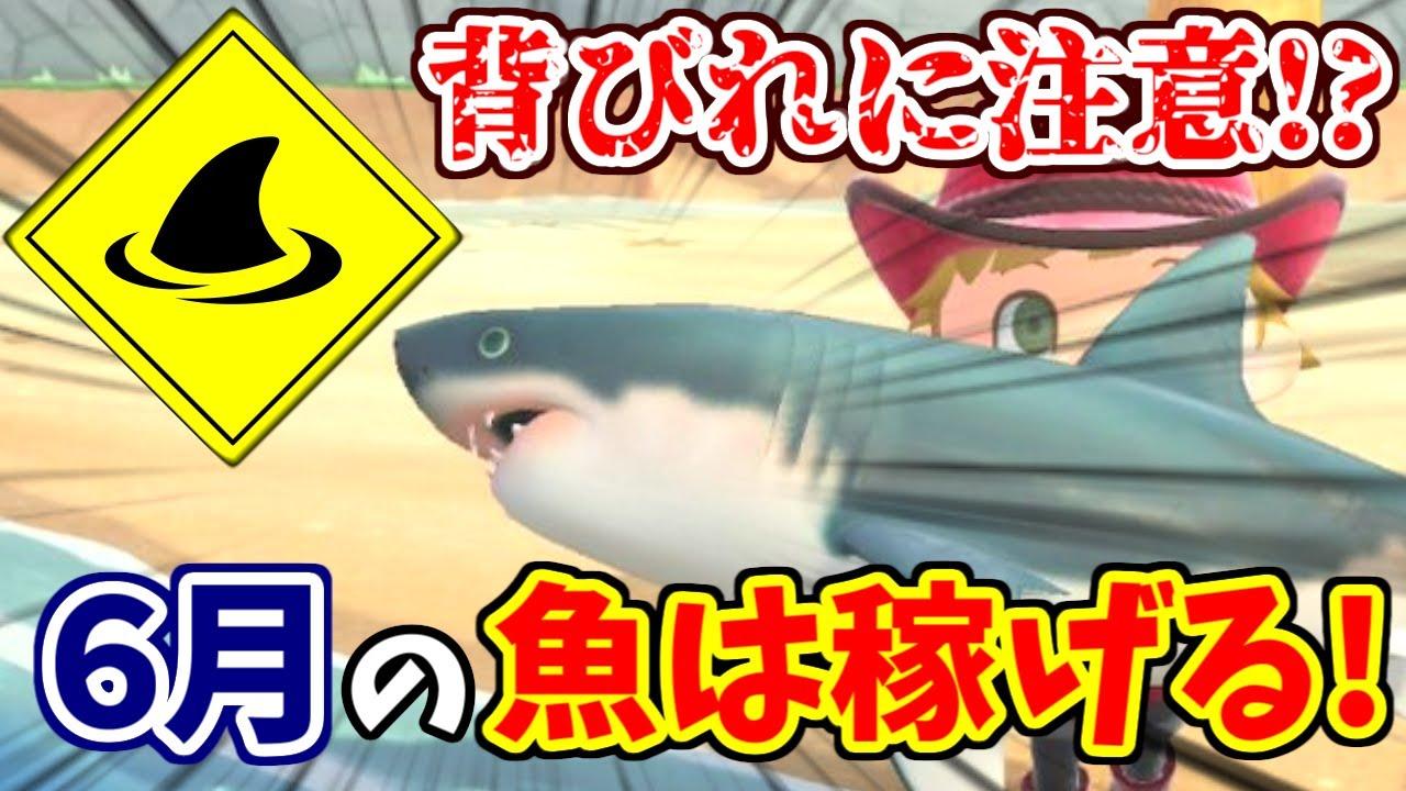 あつ森 サメ値段