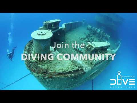 Learn To Dive This Summer With Gold Coast Dive Adventures