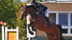 Saisonabschluss für Zoe | 2 Pferde, 5 Prüfungen | Springturnier Buttstädt 2019