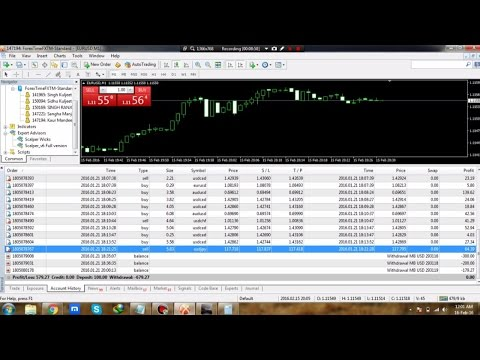 Forex trading large accounts
