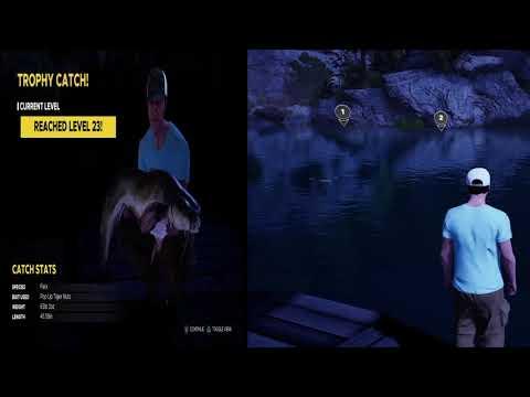 Fishing Sim World - Torpedo and Felix |