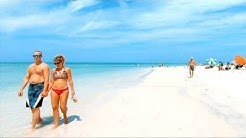 Honeymoon Island, Dunedin, Florida | Walking Tour