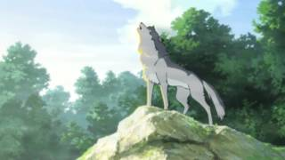 Anime Wolves ~ Fight