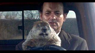 """""""Atrapado en el tiempo"""" (Groundhog Day) - Trailer en español"""
