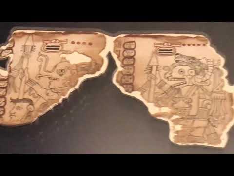 el-códice-maya-de-méxico-sabiduría-astronómica