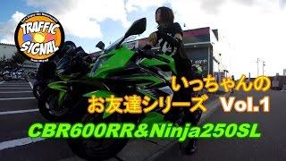 【TS Motovlog #34】CBR600RR いっちゃんのお友達シリーズVol.1びーちゃん& Ninja250SL お知らせもあるよ♡【モトブログ】