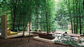 Prostoria nestles timber pavilion amongst leafy trees in Croatian forest