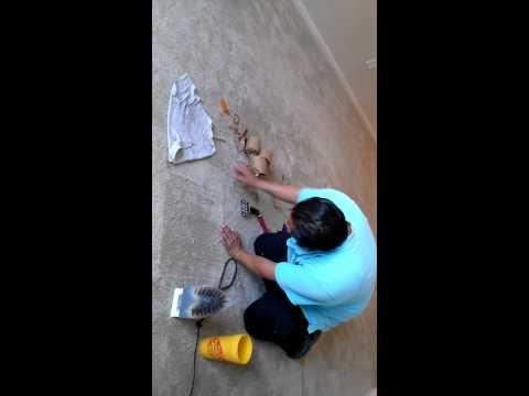 C mo limpiar y reparar una alfombra muro a muro doovi - Como limpiar una alfombra en seco ...