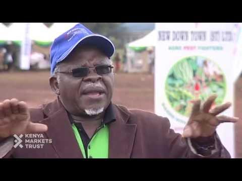 Bridging the information gap in Kenya's Agribusiness Sector