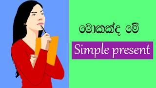 simple present English grammar in sinhala   Simple English