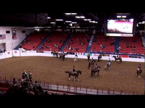 Arabian Hunter Pleasure AATR Canadian Nationals 2015