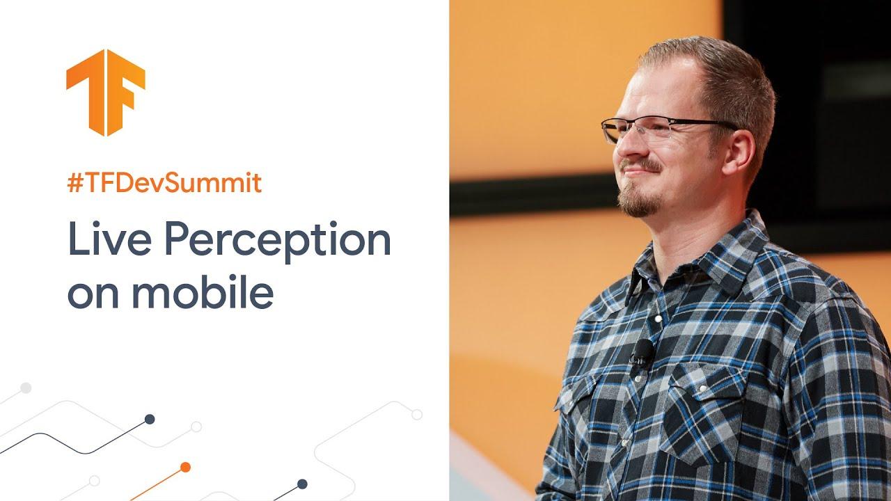 ML solutions for Live Perception (TF Dev Summit '20)