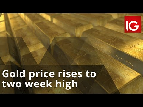 Gold price rises to two week high