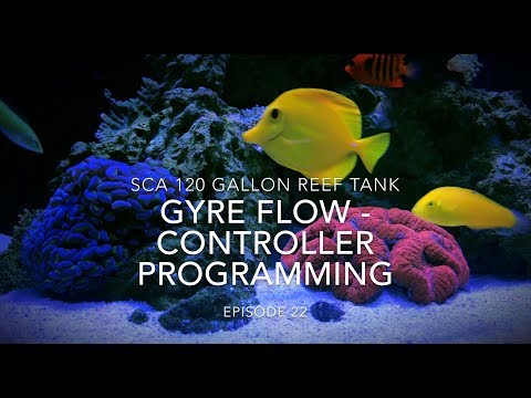 SCA 120 Gallon Reef | Ep.22 | Gyre Flow - Controller Programming Guide