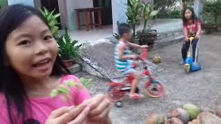cuộc chiến giữa xe đạp lớn và xe đạp nhỏ xe trược và thăm vườn và cái kết