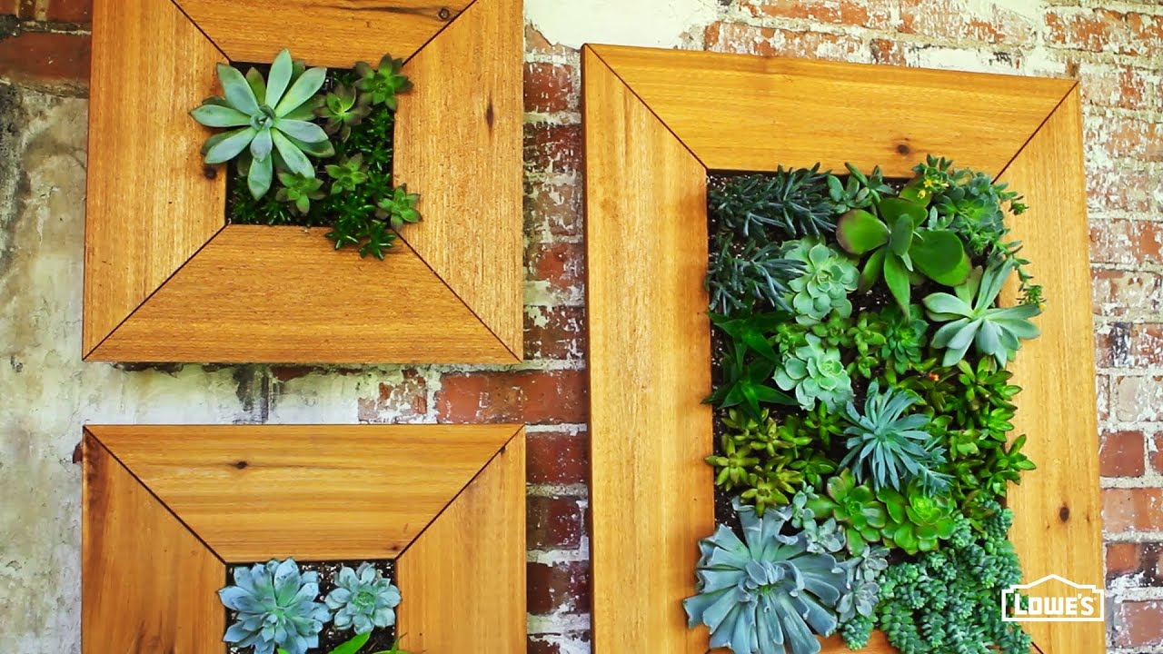 DIY Vertical Succulent Garden - YouTube