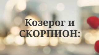 видео Совместимость гороскопов Козерог и Скорпион