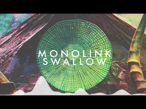 Monolink - Swallow (Original Mix)