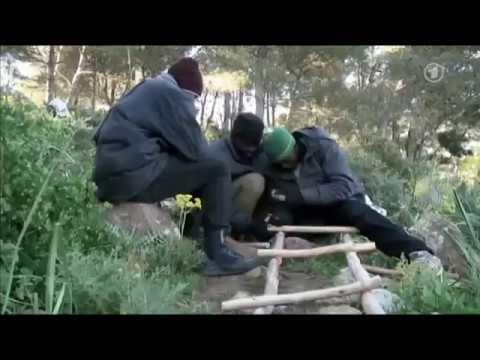 """THE LAND BETWEEN"" - Filmmaker Interview | David Fedele | German National TV - 23 06 2014"