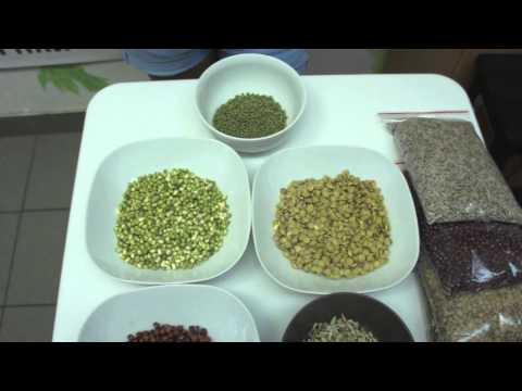 видео: Сыроедение Живая еда  Как замачивать и проращивать семена?