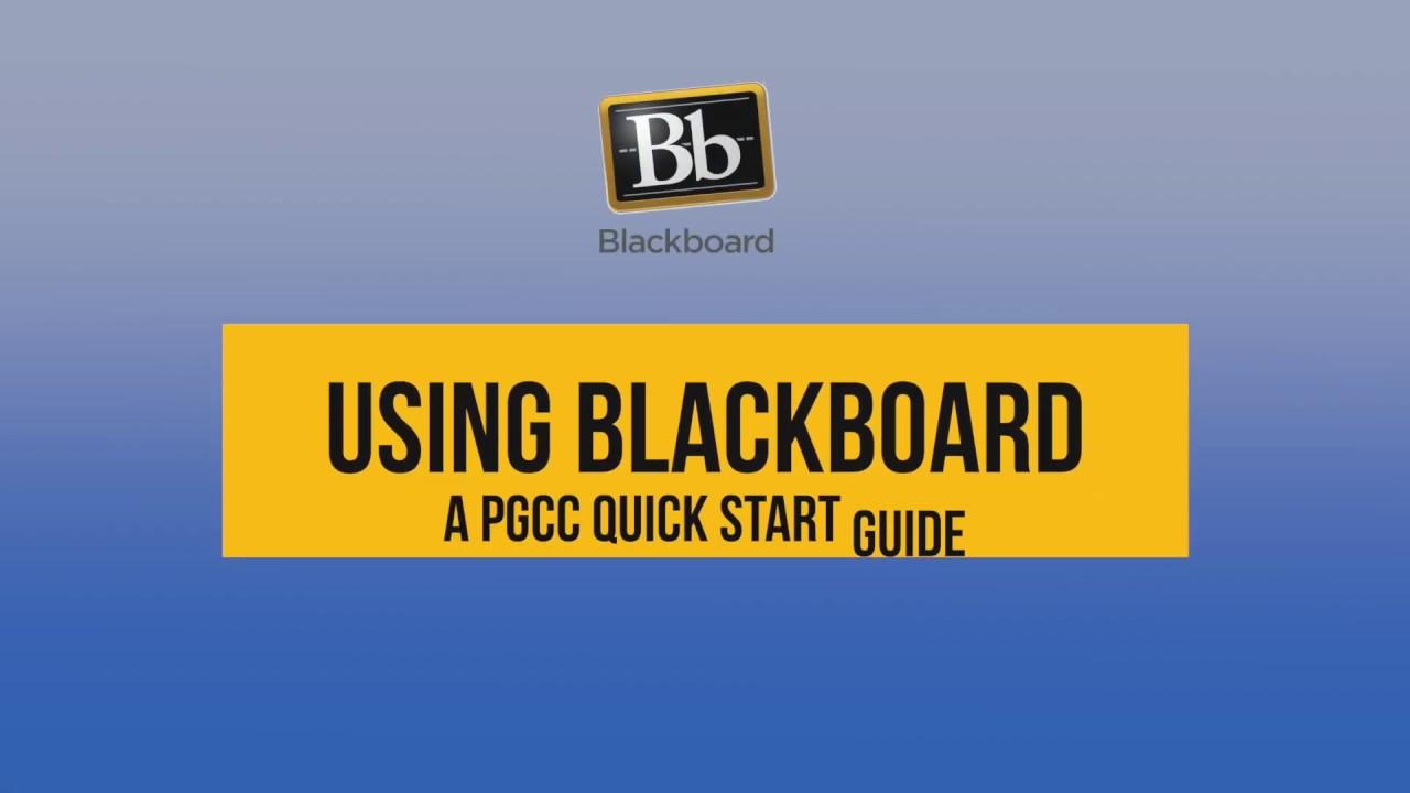 blackboard pgcc login