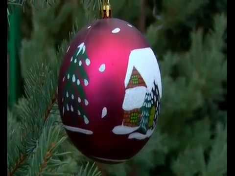 декабрь-2016-репортаж про новогоднюю ярмарку от Астраханского Питомника на СТС-Астрахань