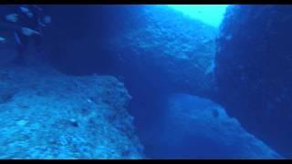 宮古島ダイビングショップ山本大司潜水案内のムービーです。 GEO-DIVE!...