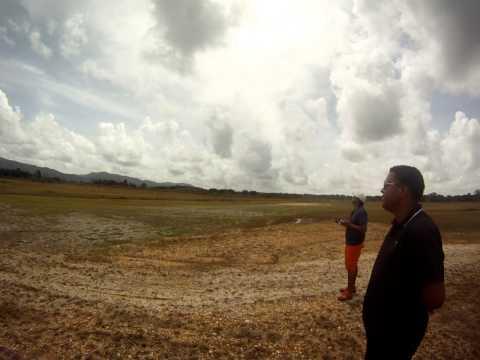 Flyeagle Viper jet rc Turbine pilot Roland Trinidad