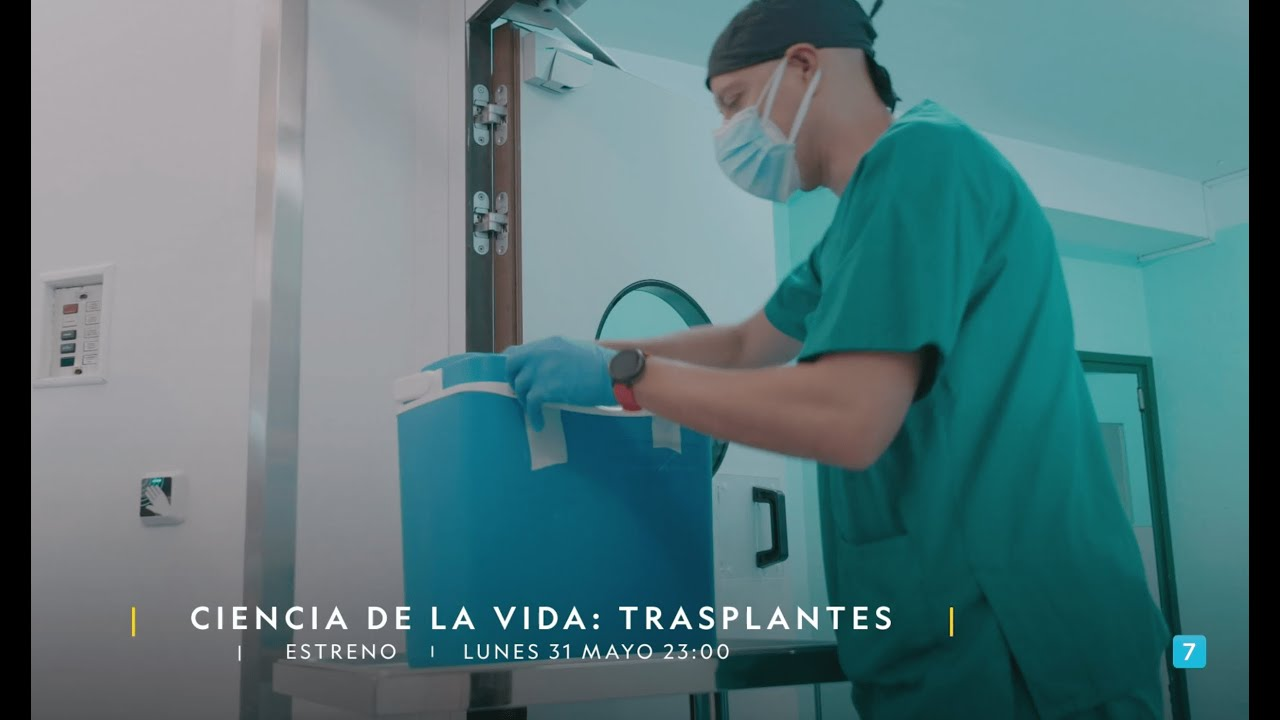 El 86% de las familias consultadas en España autoriza la donación de órganos   National Geographic